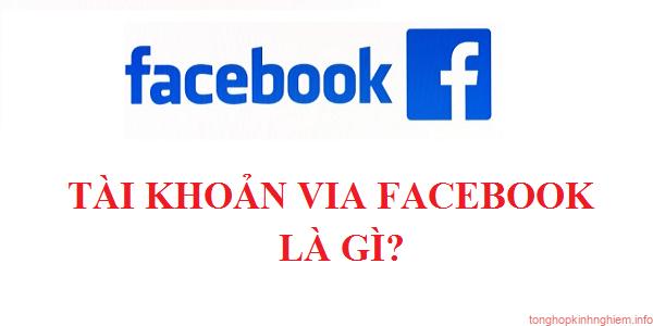 Via là gì? Vai trò của Via trong chạy quảng cáo Facebook